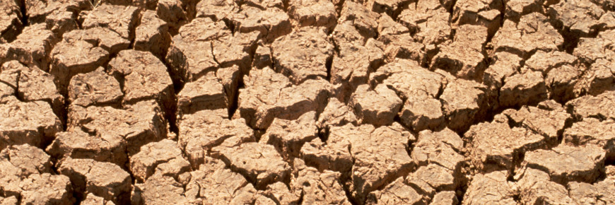 Detecting Leaks During Drought Clearwater Leak Detection