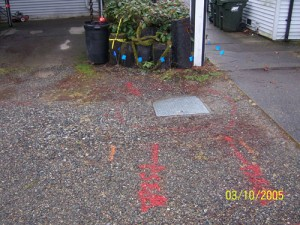 leak-detection-mercer-island-wa