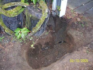water-leak-bothell-wa