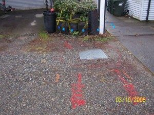 leak-detection-arlington-wa
